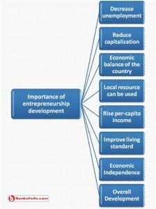 Importance of entrepreneurship development