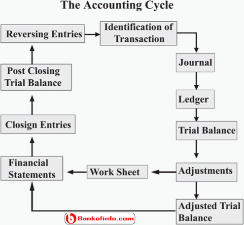 the_accounting_cycle