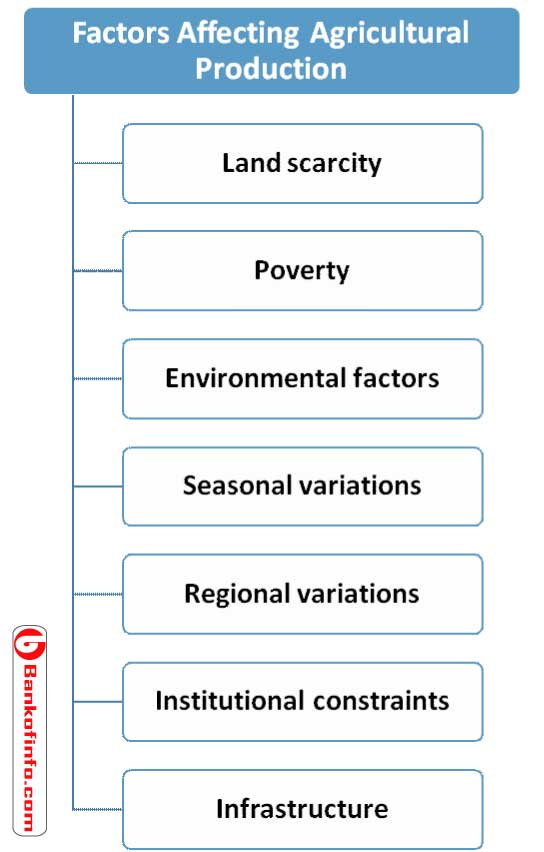 Factors Affecting Agricultural Production of Bangladesh