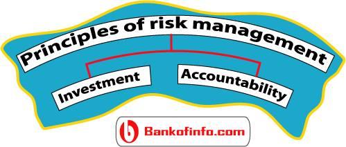 principles_of_risk_management