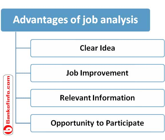 Major Advantages Of Job Analysis