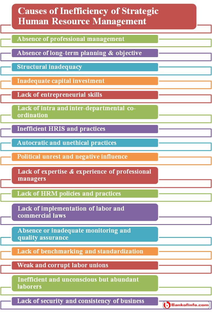 causes_of_inefficiency_of_strategic_human_resource_management