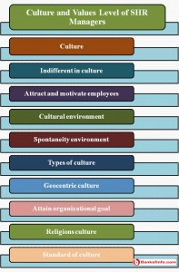 Culture and values level of SHR managers