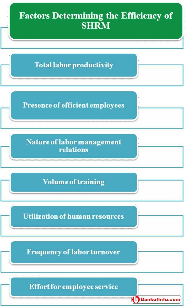 Factors Determining the Efficiency of SHRM