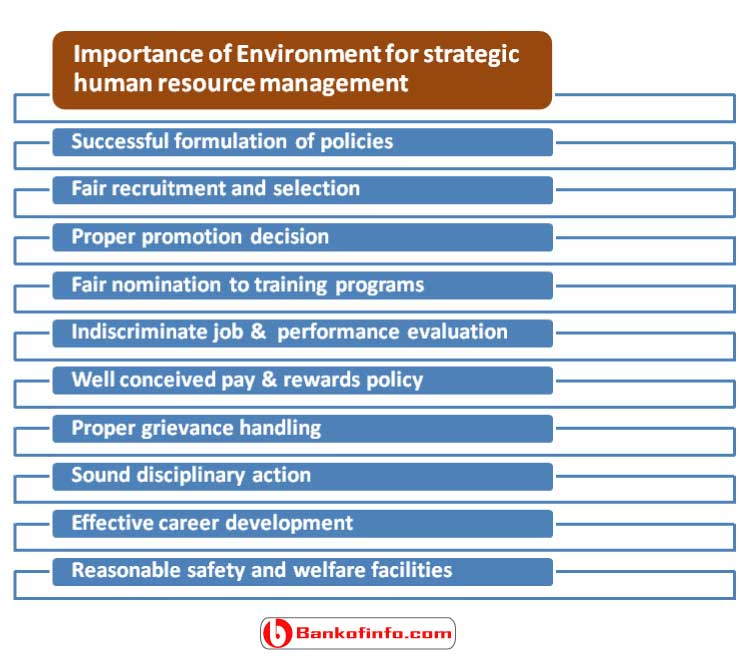 importance_of_environment_for_strategic_human_resource_management