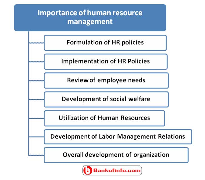 Importance Of Human Resource Management Hrm