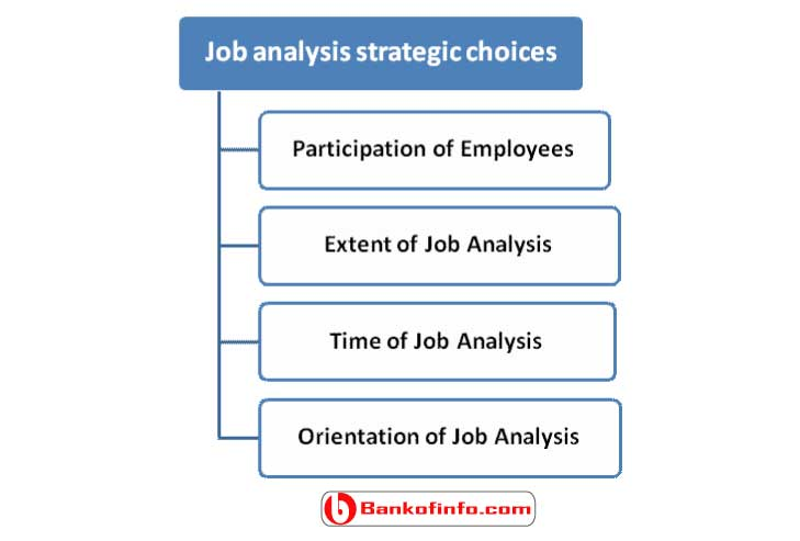 job_analysis_strategic_choices_for_human_resource_management