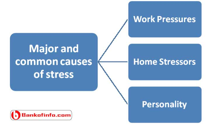 major_and_common_causes_of_stress