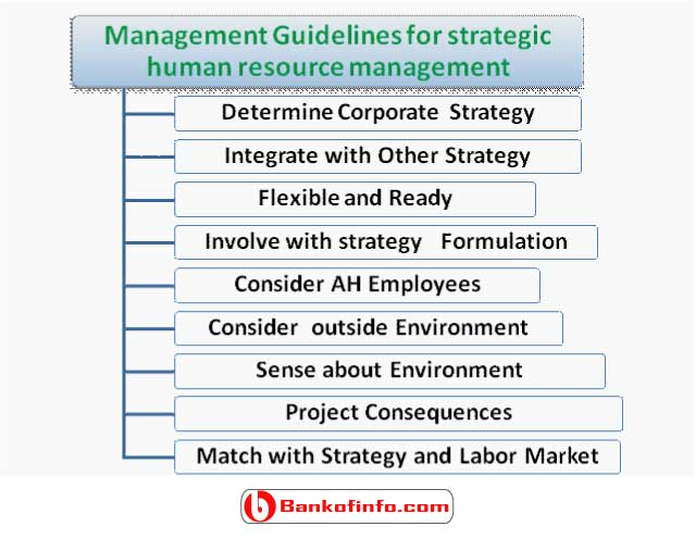 management_guidelines_for_strategic_human_resource_management