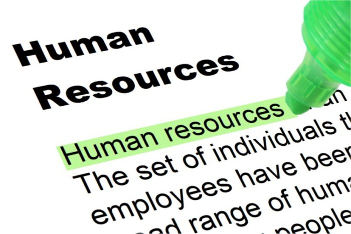 Meaning of Human Resource Audit