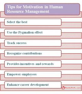 Motivation in human resource management