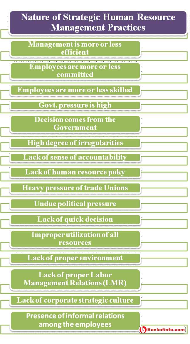 Nature of Strategic Human Resource Management
