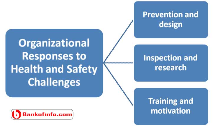 organizational_responses_to_health_and_safety_challenges