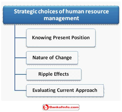 strategic_choices_of_human_resource_management