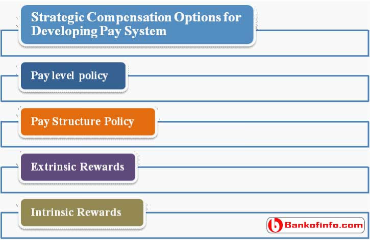 Strategic Compensation Options for Developing Pay System