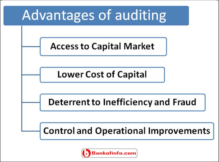 Advantages and disadvantages of auditing
