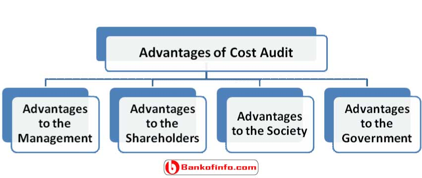 advantages_of_cost_audit