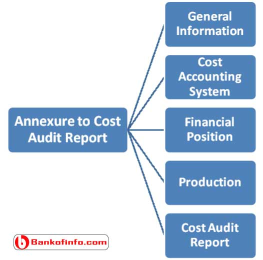 annexure_to_cost_audit_report