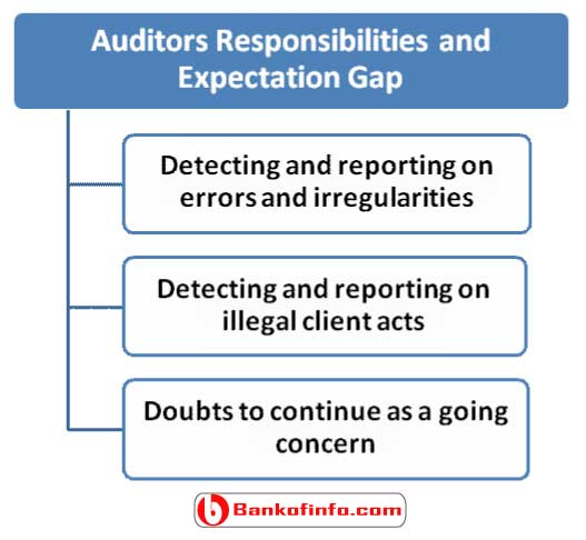 auditors_responsibilities_and_expectation_gap