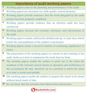 audit working papers
