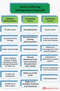 Factors affecting entrepreneurial growth