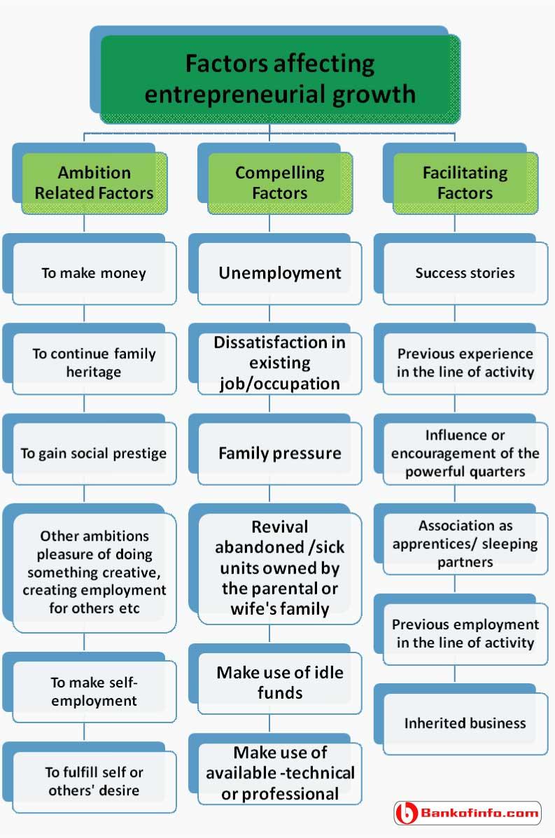 factors_affecting_entrepreneurial_growth